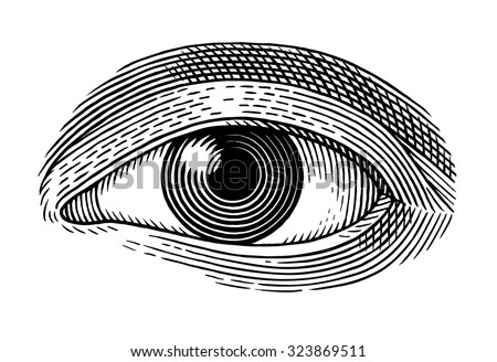 Vector illustration of human eye in engraved style - stock vector