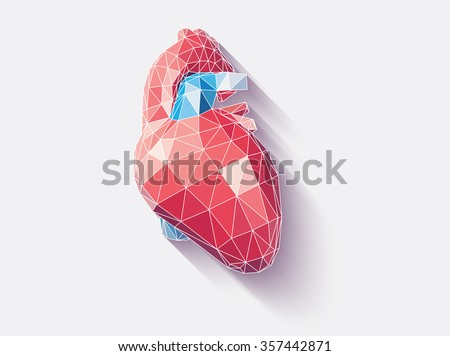 Vector illustration of human heart with faceted low-poly geometry effect - stock vector