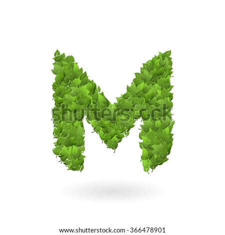 Vector illustration of letter M of green leaves. Organic ECO logo