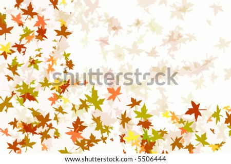 Vector illustration of maple leaves falling in autumn - stock vector