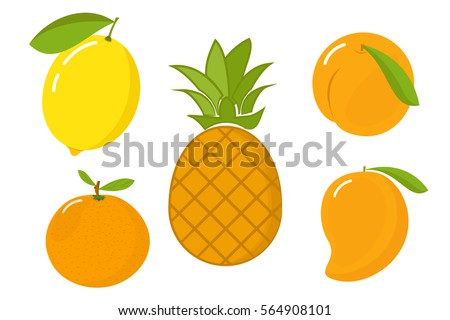 Vector illustration of pineapple, mandarin, peach, mango and lemon