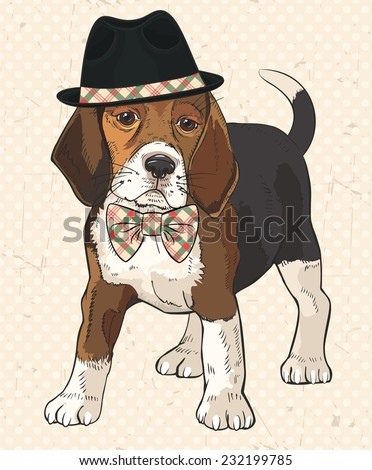 Vector illustration of purebred fashion dog with black hat on his head and checkered bow tie on his neck. Vintage polka dot texture with scrapes as background. Retro dog. - stock vector