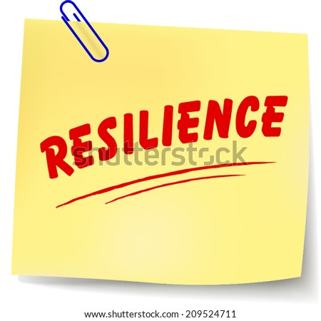 Resilience essay