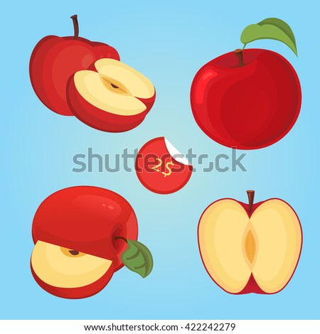 Vector illustration of ripe apple fruit and apple slices. cartoon apple slice. collection of apple fruit slice.  - stock vector