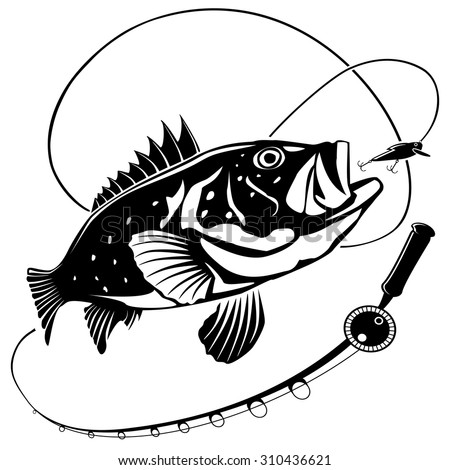 vector illustration sea bass fish fishing stock vector 2018 rh shutterstock com Largemouth Bass Decals Largemouth Bass Silhouette C