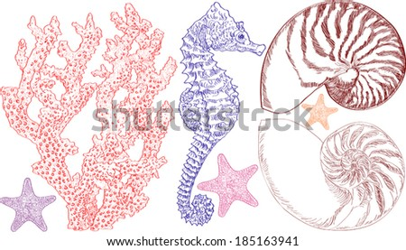 Vector illustration of sea life NOTE: a jpeg version of this image is also available  - stock vector