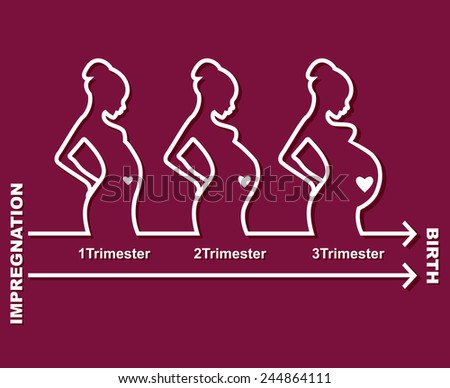 Vector illustration of Silhouette pregnant woman - stock vector