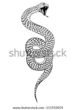 Vector illustration of snake with an open mouth - stock vector