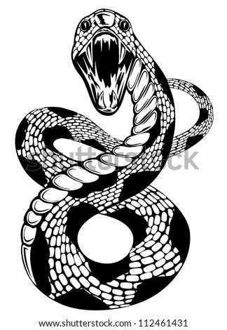 Vector illustration of snake with an open mouth on white background - stock vector