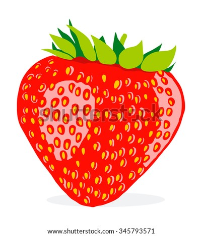 Vector illustration of strawberry, color large berry isolated on white background - stock vector