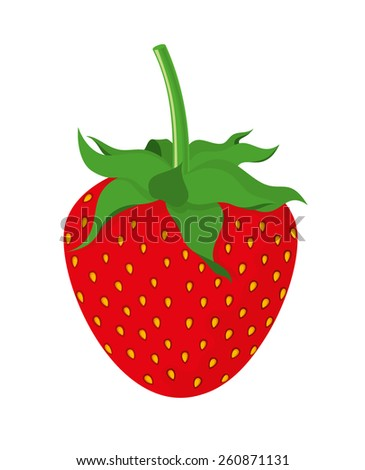 Vector illustration of strawberry on white background. Isolated.  - stock vector