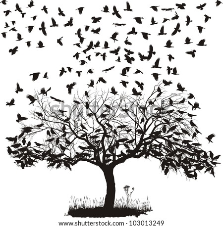 vector illustration of the crows on the tree and in the air - stock vector