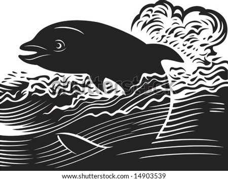 Vector illustration of the dolphin jumping out of water