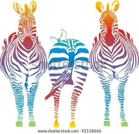vector illustration of three rainbow in the zebra - stock vector