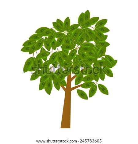Vector illustration of tree - stock vector
