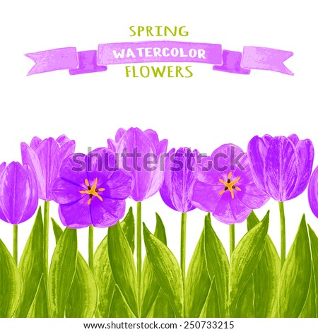 Vector illustration of tulips. Watercolor floral illustration. Floral design elements.Global color used.