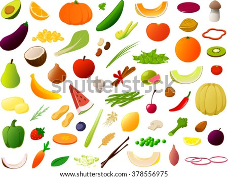 Vector illustration of various fruits, vegetables and nuts. - stock vector