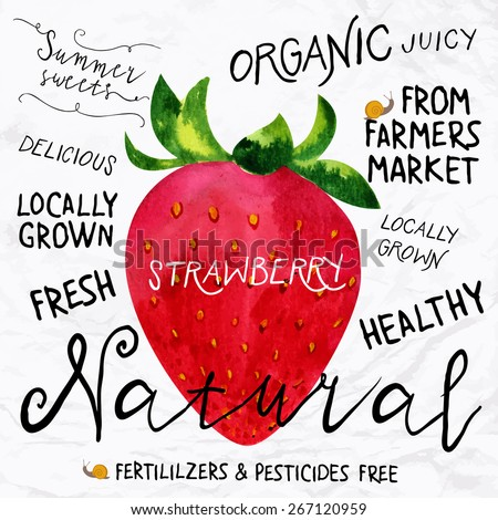 Vector illustration of watercolor strawberry, hand drawn in 1950s or 1960s style. Concept for farmers market, organic food, natural product design, soap package, herbal tea, etc. - stock vector
