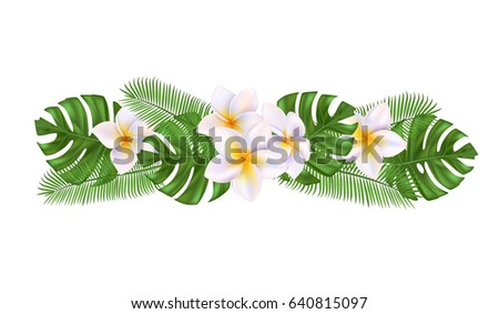Vector illustration white colored flowers green stock vector vector illustration of white colored flowers with green tropical palm leaves isolated mightylinksfo