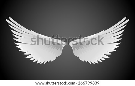 Vector illustration of white wings - stock vector