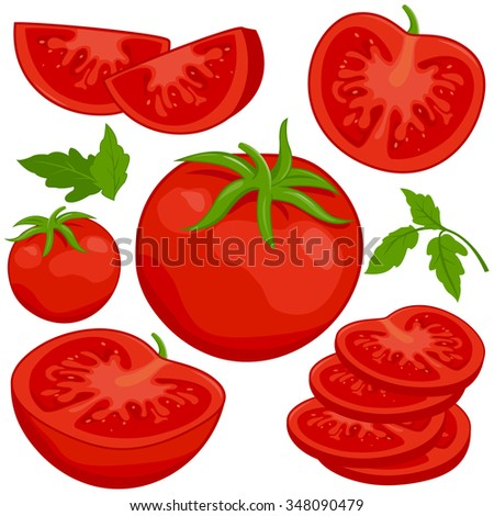 Vector illustration of whole and sliced ripe fresh tomatoes on white background, isolated - stock vector