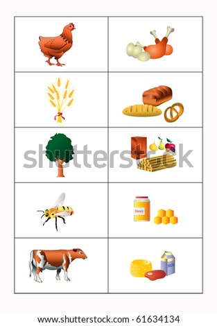 Vector illustration, origin of products, education concept, white background.