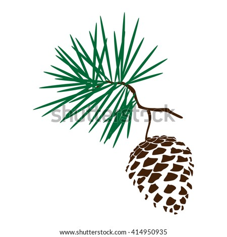 Pine Cone Stock Images, Royalty-Free Images & Vectors ...