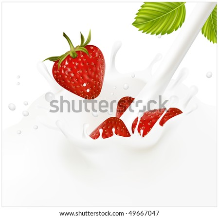 Vector illustration. Red ripe  strawberry falling into the milky splash. - stock vector