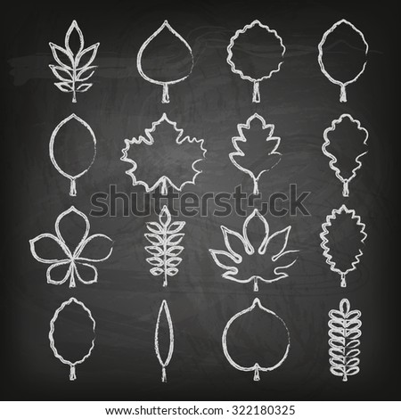Vector illustration: set of sixteen white hand drawn chalk contour icons of different tree leaves isolated on stylized black school chalk board background - stock vector