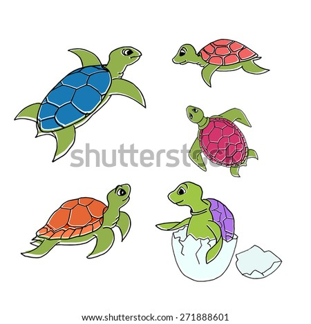 Vector illustration - set of turtles in cartoon style isolated on white background. - stock vector