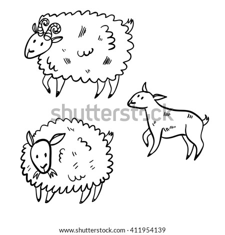 Vector illustration set with farm animals. Doodle cute three sheep. Cartoon buck and sheep. Handy drawn domestic animals. - stock vector