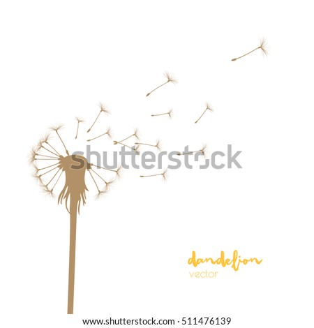 Vector illustration - Silhouette with flying dandelion buds