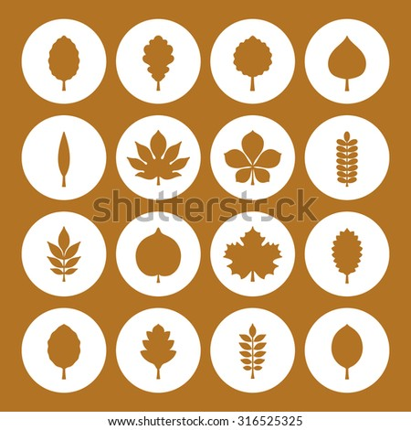 Vector illustration: sixteen golden silhouette of tree leaves (elm, beech, ash, linden, birch, alder, aspen, willow, maple,  poplar, rowan, hawthorn, walnut etc.) in white circles on golden background - stock vector