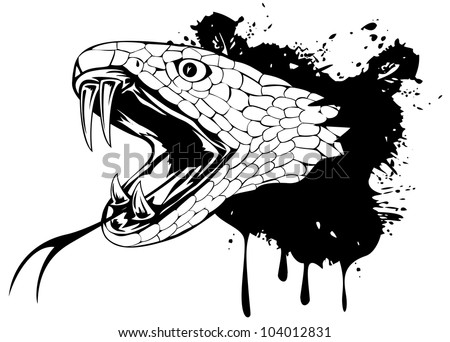 Vector illustration snake head - stock vector