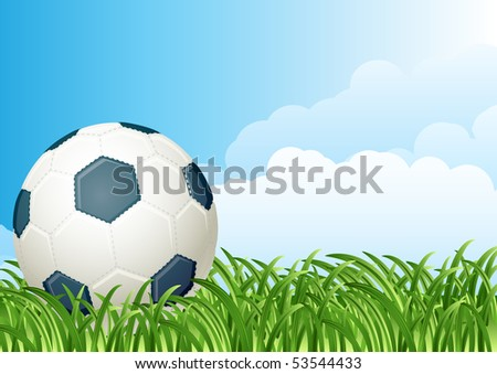 Vector illustration - soccer ball on a green grass