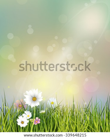 Vector illustration Spring nature field with green grass, white Gerbera, Daisy flowers and wildflowers at meadow and water drops dew on green leaves, Bokeh effect on green pastel color background  - stock vector