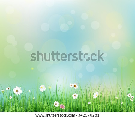 Vector illustration Spring nature field with green grass, white Gerbera- Daisy flowers at meadow and water drops dew on green leaves, with bokeh effect on blue-green pastel colorful background - stock vector