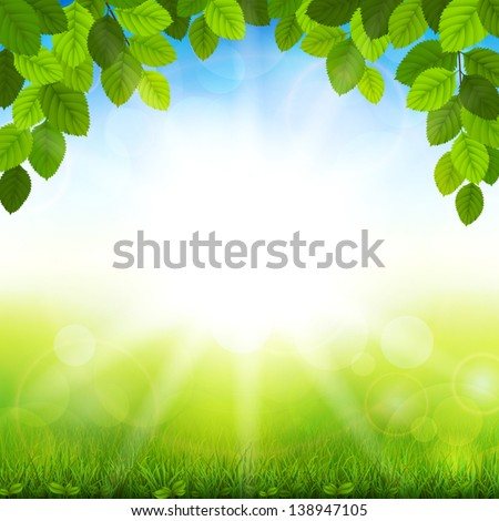Vector illustration summer background with the leaves - stock vector