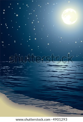 Vector illustration - the seacoast shined by the full moon - stock vector
