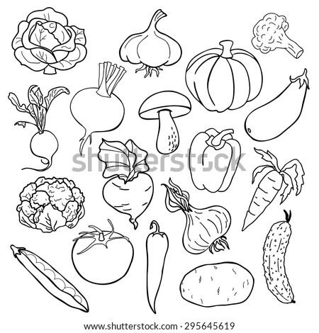 vector illustration - Vegetables - stock vector
