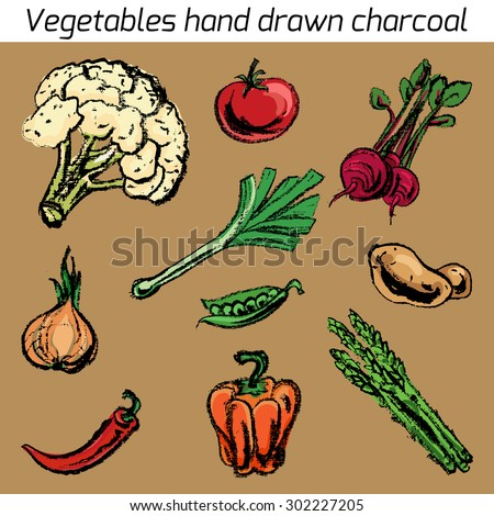 Vector illustration with hand drawn vegetable charcoal. Design of restaurants, a grocery store. Vintage set vegetables. - stock vector