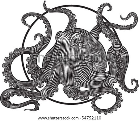 vector illustration with octopus engraving style - stock vector