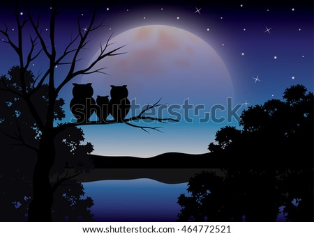 Vector illustrations ,Owls family looking at the moonlight