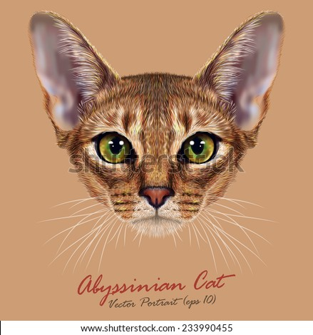 """Vector Illustrative Portrait of Abyssinian Cat. Cute breed of domestic short haired cat with a distinctive ruddy """"ticked"""" tabby coat and with green eyes. - stock vector"""