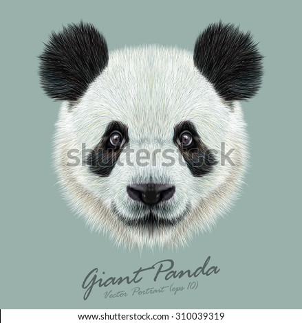 Vector Illustrative portrait of Panda.Cute attractive face bears. - stock vector