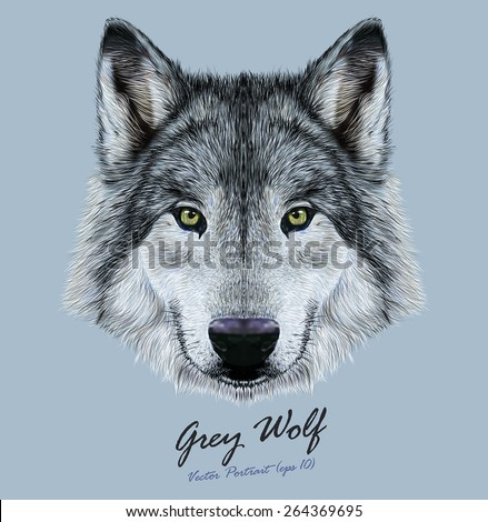 Whats your wolf name and personality  allthetestscom