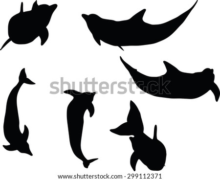 Vector Image - dolphin silhouette isolated on white background