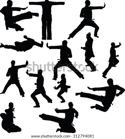 Vector image - karate silhouette, isolated on white background