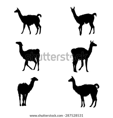 Vector image of a Collection of guanaco' silhouettes - stock vector