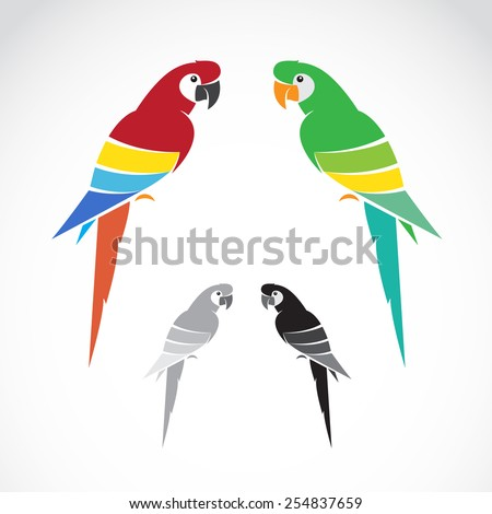 Vector image of a parrot on white background. - stock vector